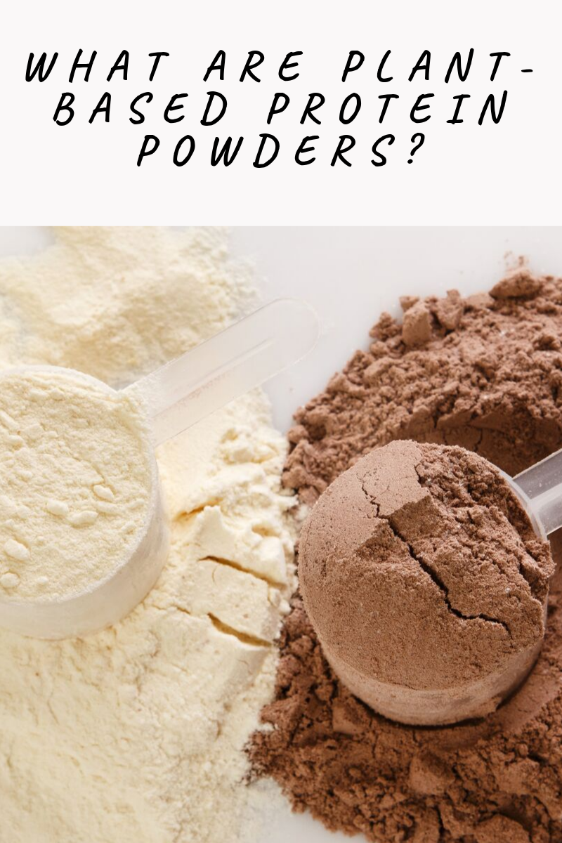 protein powder blog photo 1